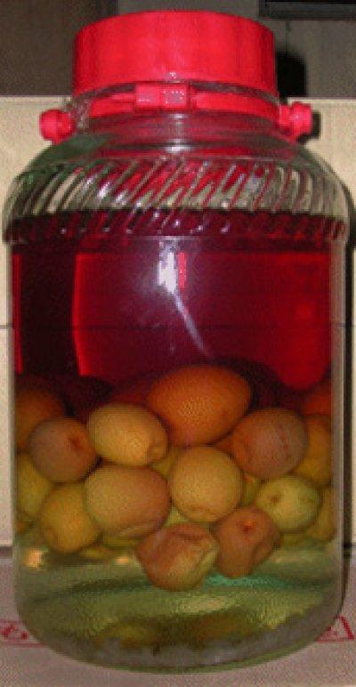 画像1: 果実の酒用日本酒「梅ちゃん」(純米清酒) 1800ml